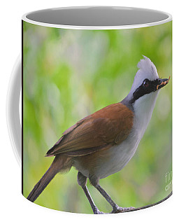 Coffee Mug featuring the photograph Perfect Portions by Judy Kay
