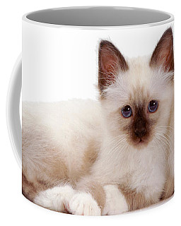 Perfectly Paired Pals Coffee Mug