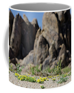 Coffee Mug featuring the photograph Perspective by Margaret Pitcher