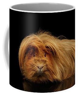 Coffee Mug featuring the photograph Trump Guinea  by Sergey Taran