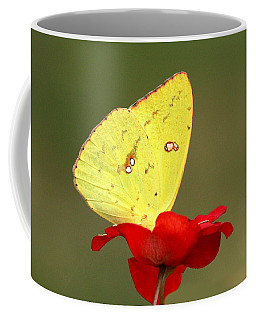 Petals And Wings Coffee Mug by Sheila Brown
