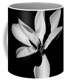 Petals Of Light Coffee Mug