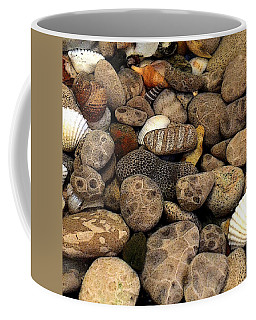 Petoskey Stones With Shells L Coffee Mug