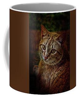Pets Fat Cat Portrait 2 Coffee Mug