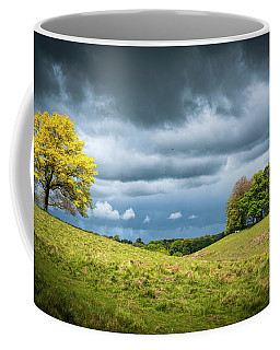 Coffee Mug featuring the photograph Petworth Dark And Light by Michael Hope