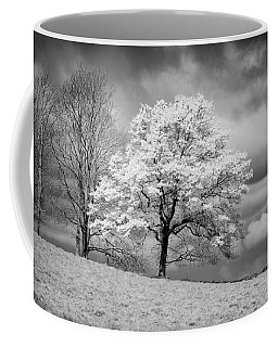 Coffee Mug featuring the photograph Petworth Tree by Michael Hope