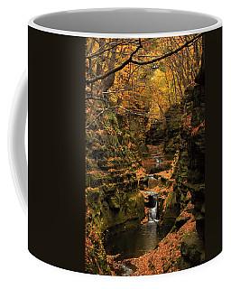 Pewit's Nest - Wisconsin Coffee Mug