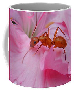 Pharaoh Ant Coffee Mug
