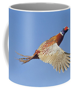 Pheasant Wings Coffee Mug