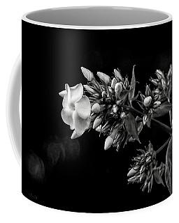 Phlox In Black And White Coffee Mug
