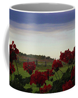 Picket Fence, Flowers And Storms Coffee Mug