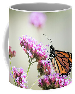 Coffee Mug featuring the photograph Picking Flowers 2 by Brian Hale