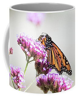 Coffee Mug featuring the photograph Picking Flowers by Brian Hale
