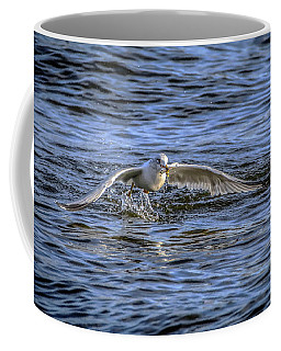 Coffee Mug featuring the photograph Pickup Service by Ray Congrove
