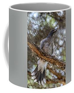 Pied Currawong Chick 1 Coffee Mug