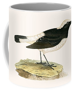 Pied Wheatear Coffee Mug