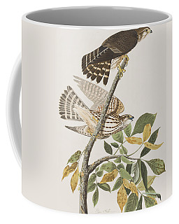 Pigeon Hawk Coffee Mug