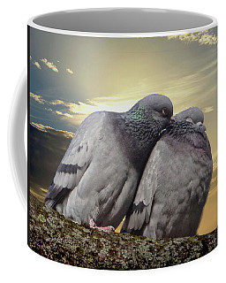 Pigeons In Love, Smooching On A Branch At Sunset Coffee Mug