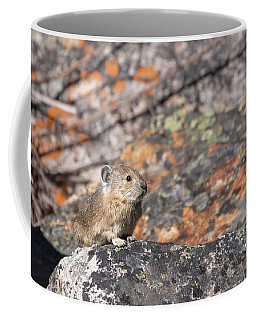 Pika Peek Coffee Mug