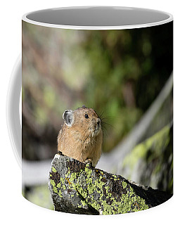 Coffee Mug featuring the photograph Pika by Ronnie and Frances Howard