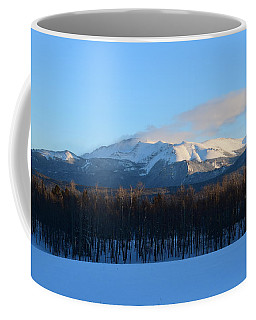 Pikes Peak From Cr511 Divide Co Coffee Mug