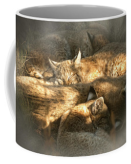Coffee Mug featuring the photograph Pile Of Sleeping Bobcats by Mary Lee Dereske
