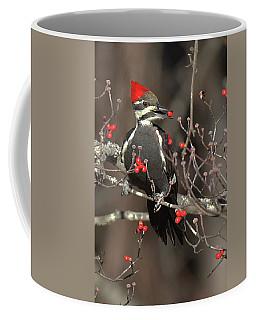 Pileated Woodpecker Lunch Coffee Mug by Alan Lenk