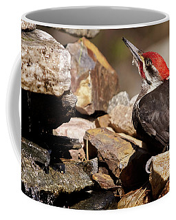 Pileated Woodpecker2 Coffee Mug