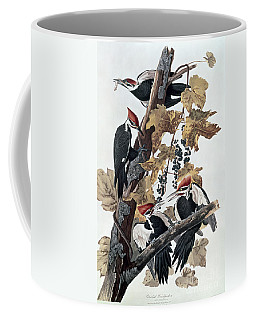 Pileated Woodpeckers Coffee Mug