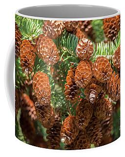 Pine Cones From Below Coffee Mug