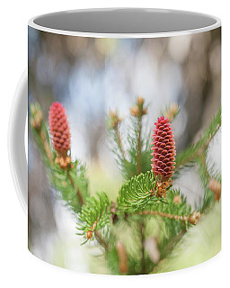 Pine Cones In Spring Time Coffee Mug