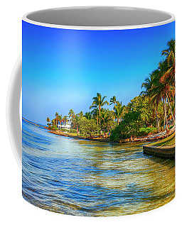 Pine Island Fl Coffee Mug by Chris Smith
