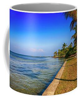 Pine Island, Florida Coffee Mug by Chris Smith