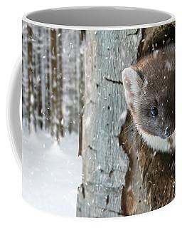 Pine Marten In Tree In Winter Coffee Mug