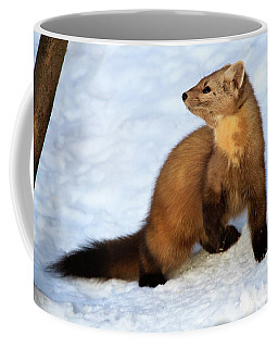 Pine Martin Coffee Mug by Gary Hall