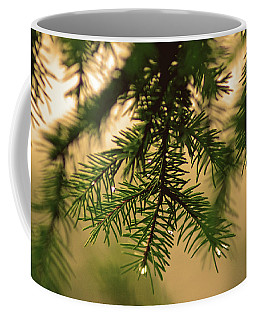Coffee Mug featuring the photograph Pine by Robert Geary