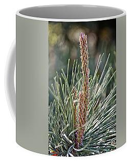 Pine Shoots Coffee Mug