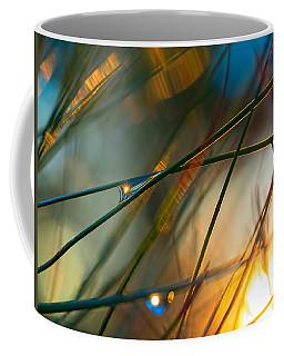 Pine Needle Sunset Coffee Mug
