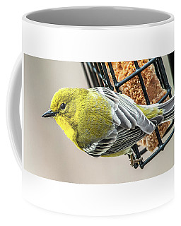 Coffee Mug featuring the photograph Pine Warbler On Feeder by Jim Moore