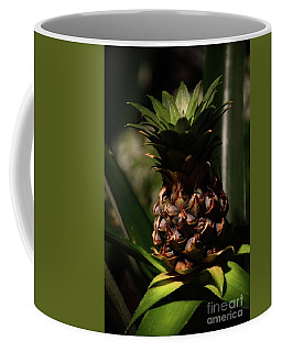 Coffee Mug featuring the photograph Pineapple by Cindy Manero