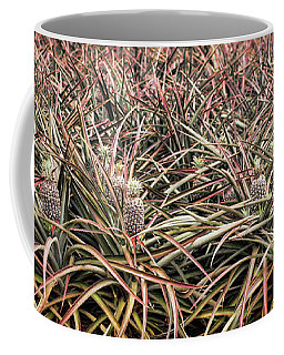 Coffee Mug featuring the photograph Pineapple Pano by Heather Applegate