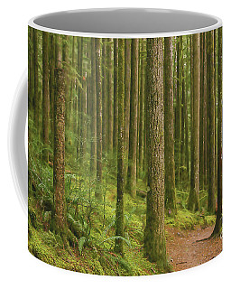 Pines Ferns And Moss Coffee Mug
