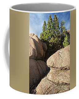 Coffee Mug featuring the photograph Pines In Granite by Tim Newton