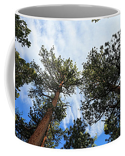 Pines In The Sky Coffee Mug