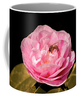 Coffee Mug featuring the photograph Pink And Bee by Howard Bagley