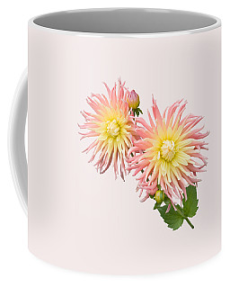 Pink And Cream Cactus Dahlia Coffee Mug