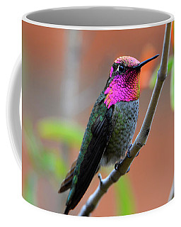 Pink And Gold Anna's Hummingbird Coffee Mug