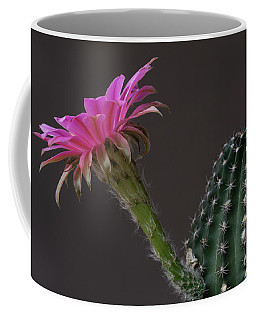 Pink And Green Flatty Cake Coffee Mug