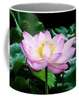 Pink And Green Floral Garden Ballet 11u Lotus Bloom Coffee Mug