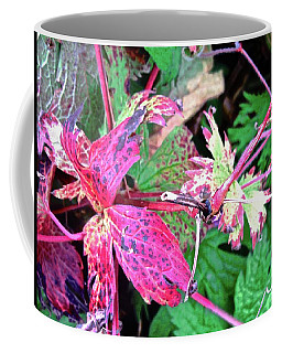 Coffee Mug featuring the photograph Pink And Green Leaves by Stephanie Moore